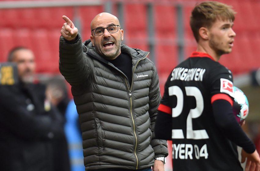 Bayer 04 Leverkusen demite Peter Bosz